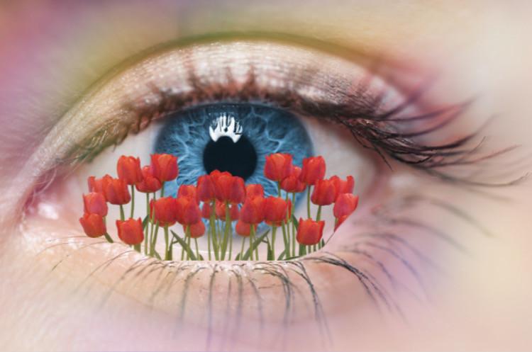 #freetoedit #eyes #floraleyes #fleurs #yeux #defiyeuxfleure #coqulicot #blueeyes #cils #arcenciel