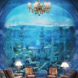 aquarium natureinside livingroom atlantis