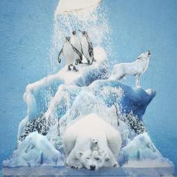 polar icy iceberg natureinside sugar