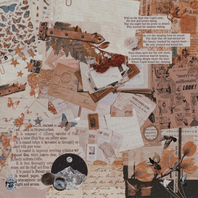wattpad: buckeybrns tumblr: boyruins #aesthetic #background #template #newspaper #tutorial #help #kpopedits #marveledits #resources #gifpack #tomholland #brown #tea #sticker #aesthetics #leaves #background #freetoedit