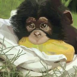 freetoedit digitalpainting monkey fruit cute
