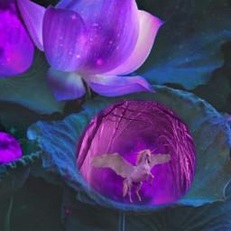 freetoedit fairytails unicorn flower purple