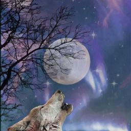 freetoedit moon photomanipulation