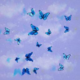 freetoedit butterfly butterflies bluebutterfly blue