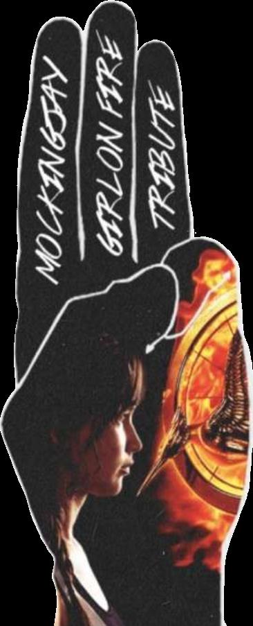 #hungergames #girlonfire #katnisseverdeen #tribute