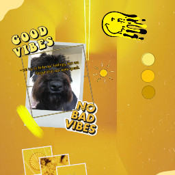 freetoedit mydog yellowaesthetic brightyellow pinterestimage