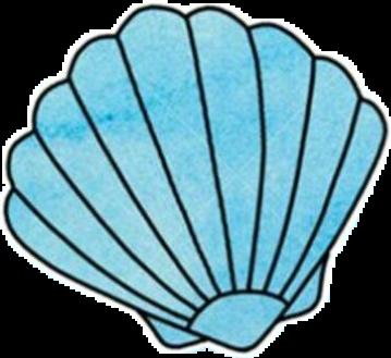 #vscogirl #vsco #aesthetic #ocean #sea #shell #seashell #blue #cute