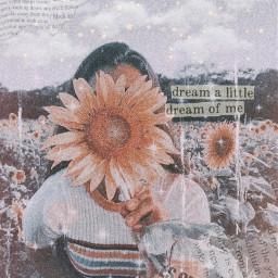 freetoedit aesthetic sunflower summer vintageaesthetic