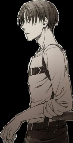 leviackerman shingekinokyokin anime boy snk freetoedit