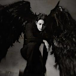 freetoedit jungkook bts dark wings