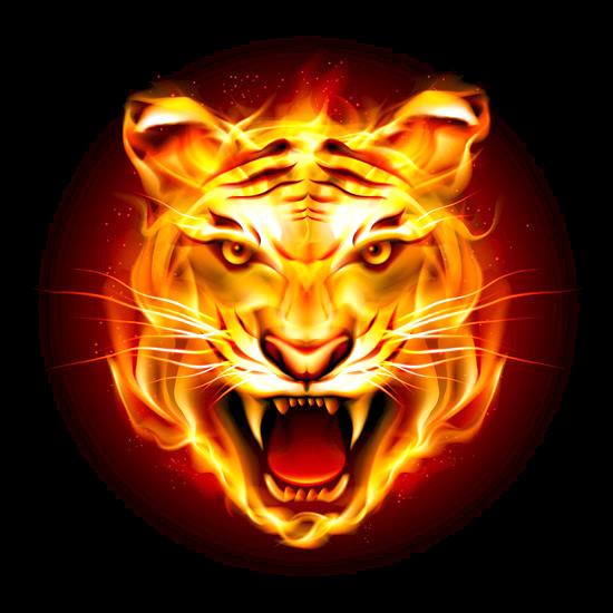 #freetoedit #tiger #fire #fireball #background #glow