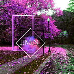 jimin bts army