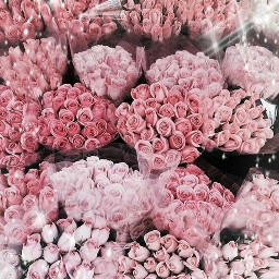 flowerbouquet flowers pink freetoedit