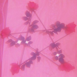 roses sparkle pink aesthetic freetoedit