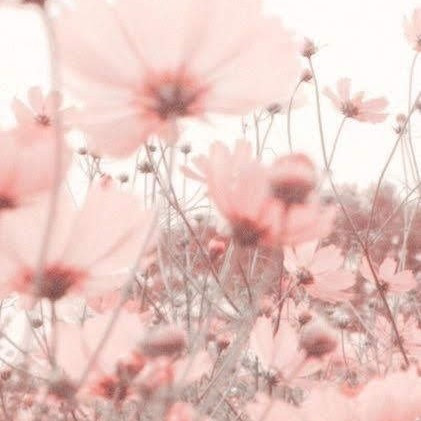 #vintage #VintageAesthetic #pink #pinkaesthetic  #freetoedit