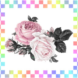 rainbow flowers checkerd freetoedit
