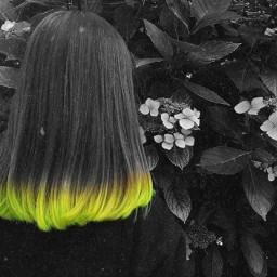 eccolorpop colorpop colorsplash