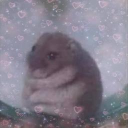 freetoedit sticker soft cute cutie