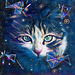 freetoedit cat art nice catlover