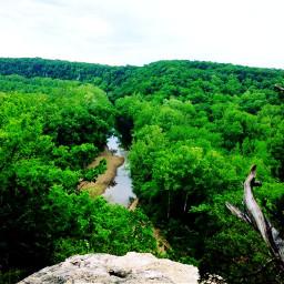 freetoedit missouri greenery creekwalkin