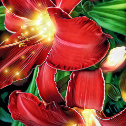 freetoedit flowers lily red lights
