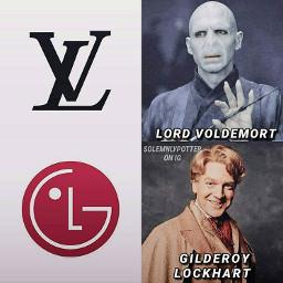 potterhead lordvoldemort voldemort tomriddle meme