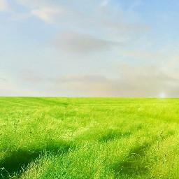 freetoedit grass