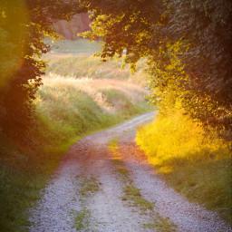 sunset sundown goldenhour freetoedit
