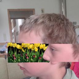 freetoedit grassandflowers cutandcopy