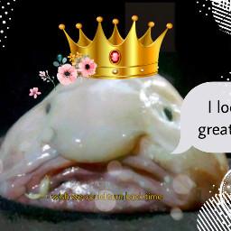 freetoedit blobfish blobfish blobfish