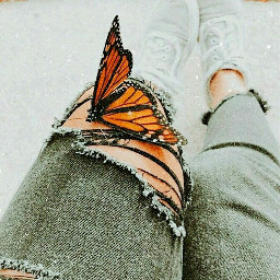 freetoedit butterfly vintageaesthetic aesthetic girl