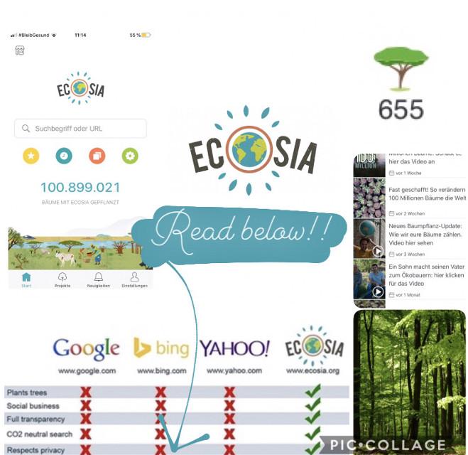 """READ... ⇩  🇩🇪 AN ALLE DIE DAS LESEN: *LADET EUCH ECOSIA RUNTER!!*  ECOSIA ist eine Suchmaschine, die pro ca. 45 suchen EINEN BAUM PFLANZT. Ihr könnt sehen wieviele suchen ihr insgesamt schon getätigt habt und wisst somit auch wieviele Bäume ihr schon """"finanziert"""" habt.  Außerdem könnt ihr auf ECOSIA sehen was die aktuellen Projekte sind und es gibt einen """"Baumzähler"""" direkt auf der Startseite der in Love Zeit anzeigt wieviele Bäume schon von ECOSIA gepflanzt wurden. ECOSIA sucht CO2 neutral, verwendet eire Daten nicht für andere zwecke und ist ein sozialer Betrieb.  Also WORAUF WARTET IHR NOCH? Nutzt ab sofort ECOSIA für eine bessere Welt!! Für euch macht es keinen Unterschied, FÜR DIE ERDE SCHON!!  💚💚💚  🇬🇧 TO ALL WHO READ THIS: *DOWNLOAD ECOSIA !!* ECOSIA is a search engine that seeks to plant ONE TREE per app. 45. You can see how many searches you have already received and therefore also know how many trees you have """"checked"""". The same you can see on ECOSIA was the right projects and there is a """"tree counter"""" directly on the home page which in love ECOSIA searches CO2 neutral, does not use your data for other purposes and is a business.   WHAT ARE YOU WAITING FOR? Use ECOSIA for a better world now !! It makes no difference for you, FOR THE EARTH ALREADY !! 💚💚💚 #klima#klimawandel#environment#ecosia#internet#bäume#umwelt#sozial#alternative#fff#fridaysforfuture#thereisnoplanetb #freetoedit"""
