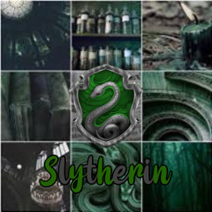 slytherin-22fan