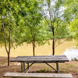 freetoedit myphoto summervibes summer naturelover
