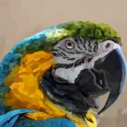art painting mosaic madewithpicsart mystyle