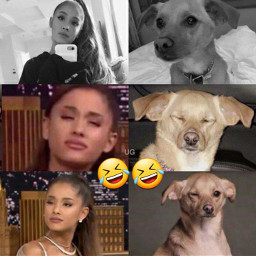 freetoedit arianagrande toulousegrande toulouse ariana
