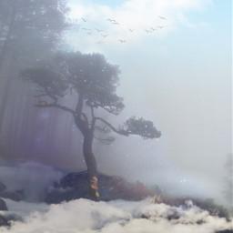 freetoedit vipshoutout foggy