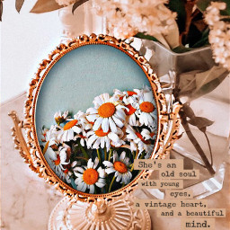 freetoedit vintage vintageaesthetic flowers daisy