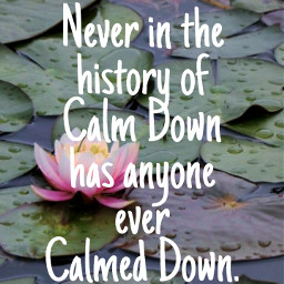 history calm calmdown lilypad quote quotes flower water