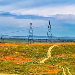 freetoedit california californiasun roadtrip roadtrippin
