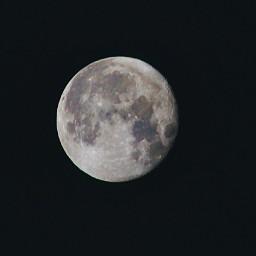 rookiephotographer dreamjob starlightstarbright