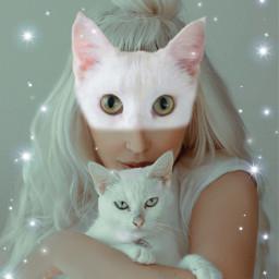 freetoedit cat white whitecat facecat ecmyanimalalterego