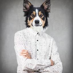 dog human humandog animal elegant freetoedit ecmyanimalalterego myanimalalterego
