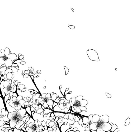 #freetoedit  #edit #sakura #manga #anime #aesthetic #mangaaesthetic #flower #flowers #mangaflower #сакура #манга #вишня #аниме #эстетика #мангаэстетика #цветок #цветы #мангацветок #naylor_fox