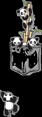 freetoedit pandas