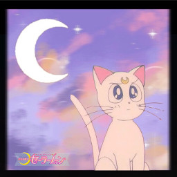 artemis sailormoon cat anime oldanime cute sailorguardians magicalgirl magicalcat moon sailor japan japanese sailorjupiter sailormars sailorneptune sailorvenus sailormercury sailorsaturn freetoedit