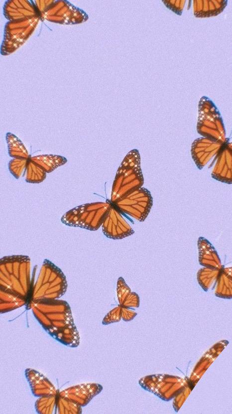 purple butterfly wallpaper #butterfly #monarch #purple # ...