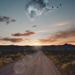 freetoedit sky moon birds path light effect inspiration stayinspired madewithpicsart unsplash