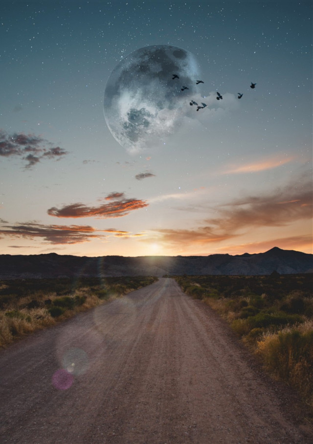 🤗 You just need to take the first step. There will be a beautiful path for you to go through. 🌌🍃 #freetoedit #sky #moon #birds #path #light #effect #inspiration #stayinspired #madewithpicsart
