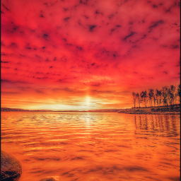 freetoedit madewithpicsart sunset horizon sunrise orange nature sky clouds sun sunshine red water lake sea trees woods rocks colourful peace quiet relaxing life